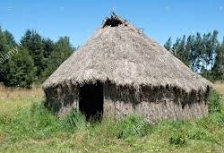 3. Machupe Hut in Temuco
